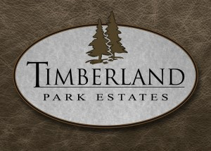New Homes New Custom Homes Lake Oswego NW Contemporary Design