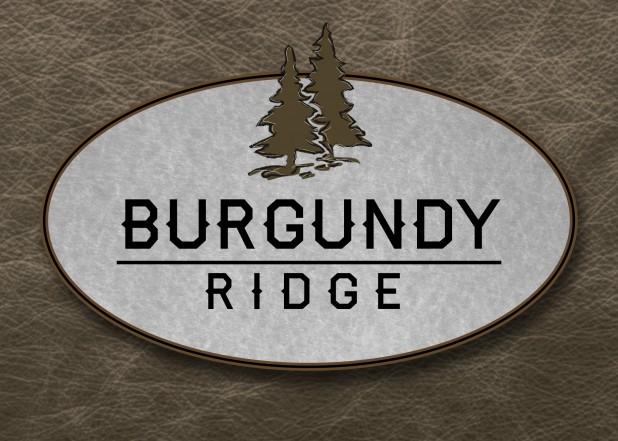 Bull Mountain Tigard Custom Homes new home